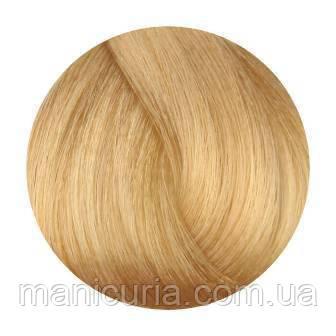Стойкая крем-краска для волос Fanola Colouring cream 10.3 Платиновый блондин золотистый, 100 мл