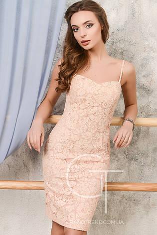 Женское  платье Carica  KP-10028, фото 2
