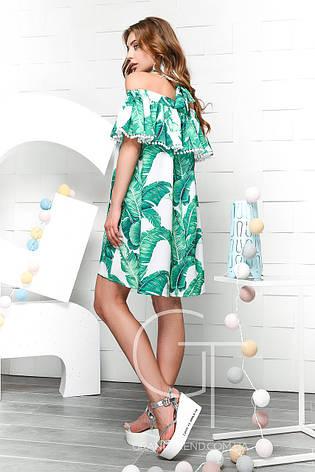 Женское  платье Carica  KP-5968-3, фото 2