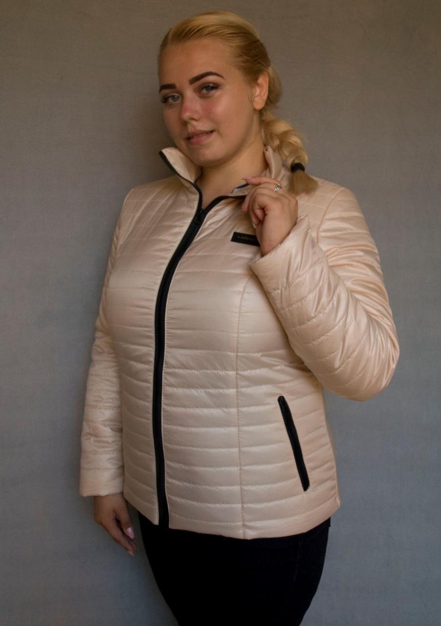 Куртка женская №5/1 (бежевый)