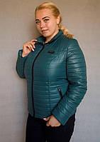 Куртка женская №5/1 (зелёный)