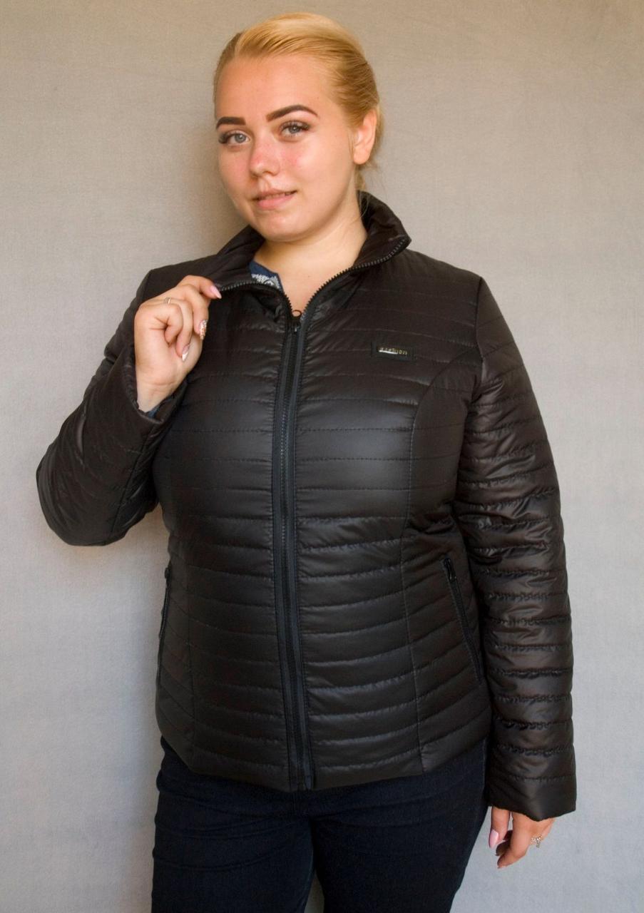 Куртка женская №5/1 (чёрный)