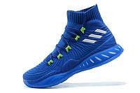Баскетбольные кроссовки Adidas Crazy Explosive 2017 PRIMEKNIT BLUE