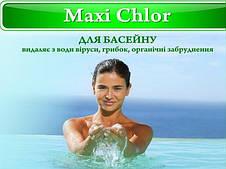 Maxi Chlor (2кг)
