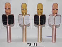 Микрофон караоке (цвета) YS80