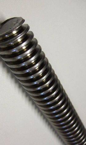 DIN 976 Шпилька с трапецеидальной резьбой Tr24х5х1000, фото 2