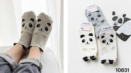 Носки Caramella I look like - низкие - серые, панда, с ушками, фото 2