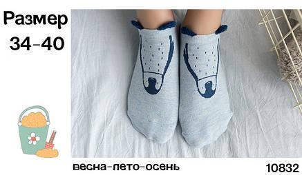 Носки Caramella I look like - низкие - голубые, пингвин, с ушками, фото 2
