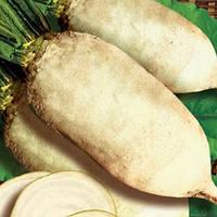 Свекла кормовая Центаур Поли, 1кг — семена кормовой свеклы белой. Польша