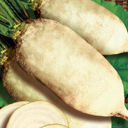 Свекла кормовая Центаур Поли, 20 кг Мешок — семена кормовой свеклы белой. Польша, фото 2