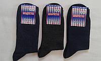 Носки мужские/подростковые хлопок+стрейч р.23-25.Цвет серый,синий. От 10 пар по 6,50грн