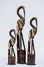 Семья цапель натуральных, 33207