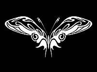 Виниловая наклейка- Бабочка 16 (от 10х10 см)