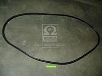Уплотнитель стекла ветрового КАМАЗ ЕВРО (пр-во БРТ). 53205-5206054-10Р. Цена с НДС.