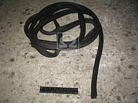Уплотнитель двери КАМАЗ (пр-во БРТ). 5320-6107147-20. Цена с НДС.