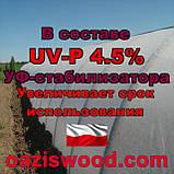 Агроволокно р-30g 6.35*250м белое UV-P 4.5% Premium-Agro Польша, фото 7