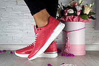 Женские кожаные кроссовки Nike кораловые 212SA-W1 р. 37, фото 1