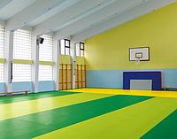 ПВХ покрытие для спортивного зала LG LEISURE 4 мм.