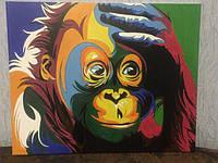 Картина по номерам Turbo Радужная обезьяна VP599