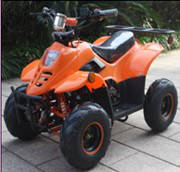 Детский электроквадроцикл E-ATV  SPIDER 800W