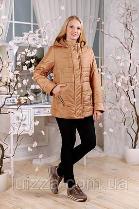 Женская демисезонная куртка с отделкой из ткани 48-60р, темн. сирень 48, фото 2