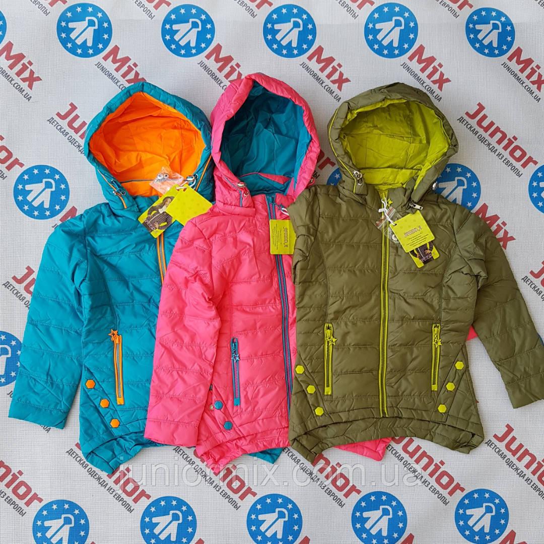 Демисезонная  детская куртка для девочек оптом SPEED.A