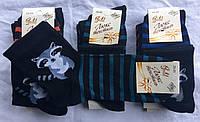 Носки женские стрейчевые тм Люкс Текстиль Житомир , фото 1