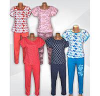 Комплект женский (пижама летняя) с брюками 03217 Виктория, хлопок, р.р.44-56