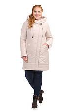 Куртка женская демисезонная батал 3634, 48-58, фото 3