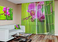 """ФотоТюль """"Малиновая орхидея и бамбук"""" (2,5м*2,0м, на длину карниза 1,5м)"""