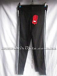 Спортивные штаны женские р.S-L купить оптом 1789