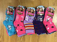 Носочки для девочек оптом, Pesail 27-38 рp., фото 1