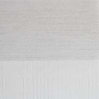 Рулонные шторы День-Ночь Ткань Оазис Z-240 Белый