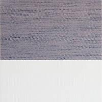Рулонні штори День-Ніч Тканина Оазис Z-244 Сірий
