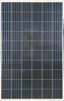 Солнечная батарея Risen Solar RSM60-6-270P (5BB)