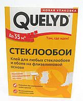 Клей для стекловолокна 500гр QUELYD