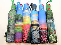 Женские и мужские зонты