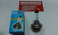 Лампа H-7 55W 12V Беларусь