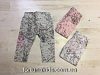 Трикотажные шорты для девочек Miss Wifi 8-16 лет