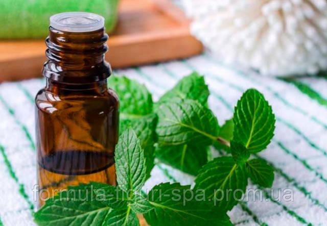 Роль эфирного масла мелиссы в косметологии