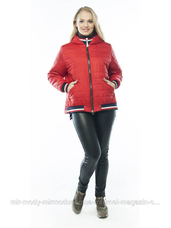 Демисезонная куртка «Бланка» вишня с 48 по 58 размер wayk