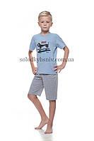 Піжама дитяча ELLEN для хлопчика шорти+футболка Спортивний Цуцик р.152 - 023/001/1