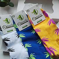 Носки 3 шт в подарочной упаковке, ароматизированные