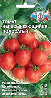 Семена Томат детерминантный Непас 10,   0,1 грамма Седек
