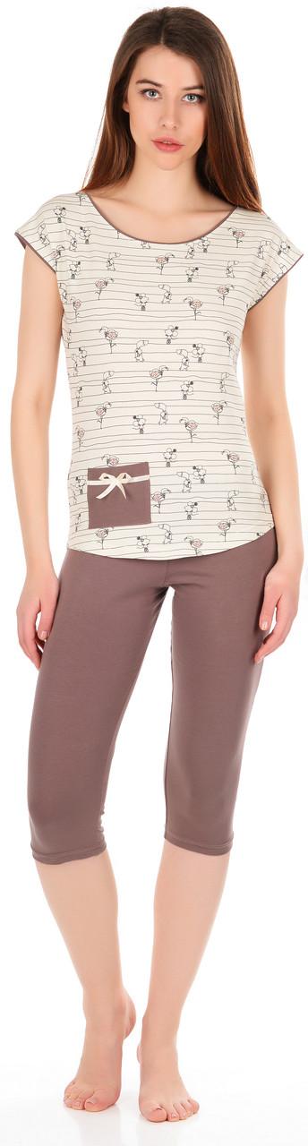 Бавовняна жіноча піжама (футболка і бриджі) 0140/180 42-44(S)