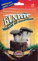 Мицелий белого степного гриба на палочках, 20 палочек