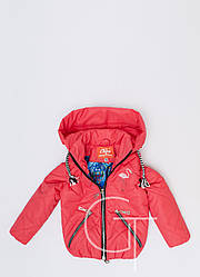 Детская демисезонная куртка-трансформер  для девочки 31099-22, 104-128