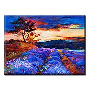 Картина Lavender Valley