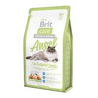 Сухой корм Brit Care Cat Angel I am Delighted Senior 34/15 (с уткой и рисом для пожилых кошек) 0,4 кг