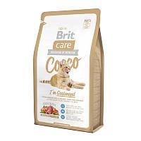 Сухой корм Brit Care Cat Cocco I am Gourmand 40/19 (с уткой и лососем для привередливых кошек) 7 кг
